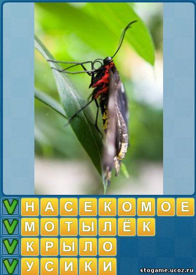 Угадай слово 4 картинки одно слово ответы уровень 1 17